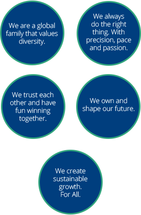 our value circles graphic
